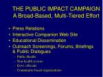 the public impact campaign a broad based multi tiered effort