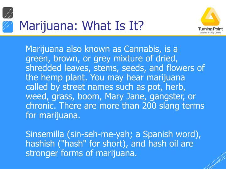 Marijuana: What Is It?