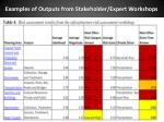 examples of outputs from stakeholder expert workshops