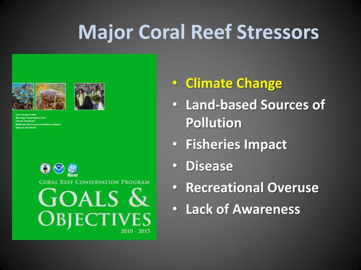 Major Coral Reef Stressors