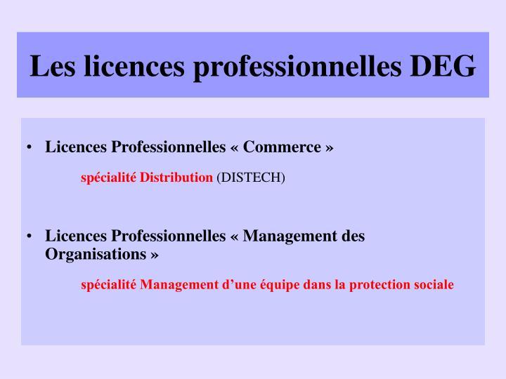 Les licences professionnelles DEG