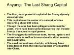 anyang the last shang capital
