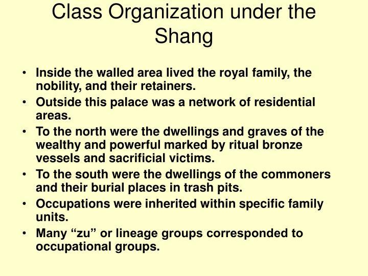 Class Organization under the Shang