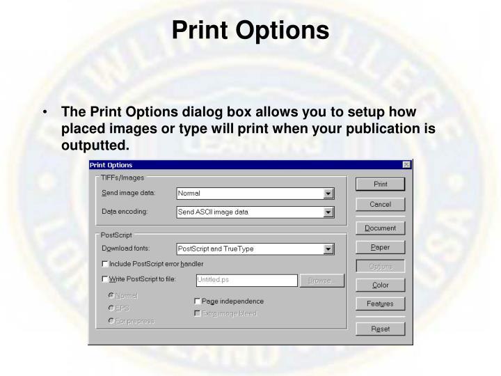 Print Options