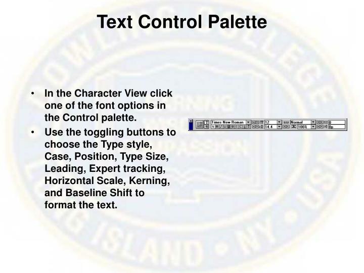 Text Control Palette