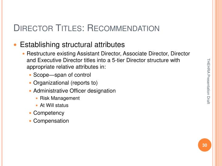 Director Titles: Recommendation