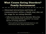 what causes eating disorders family environment1