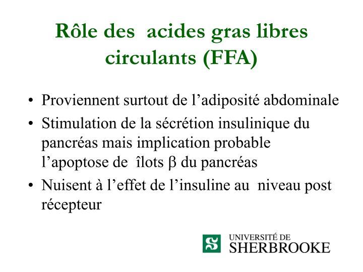Rôle des  acides gras libres circulants (FFA)
