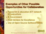 examples of other possible opportunities for collaboration