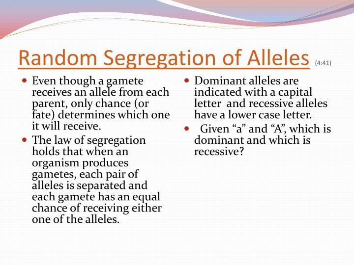 Random Segregation of Alleles
