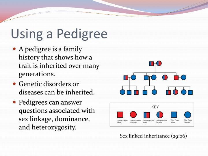 Using a Pedigree