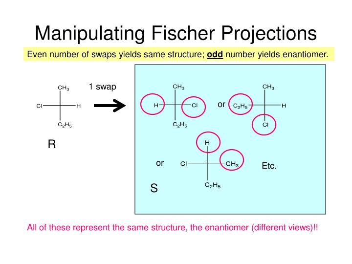 Manipulating Fischer Projections