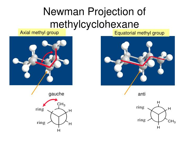 Newman Projection of methylcyclohexane