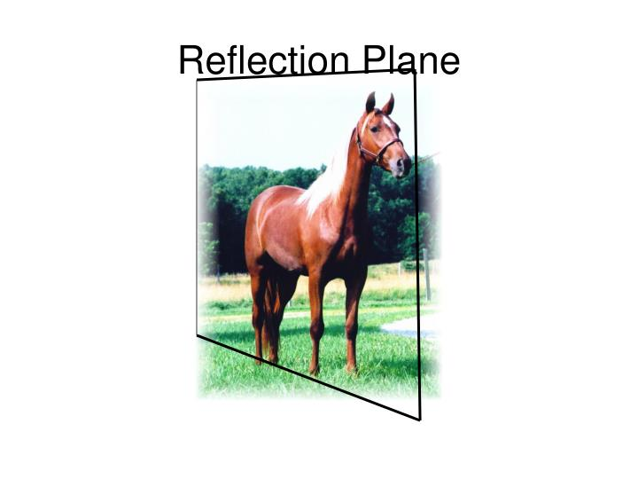 Reflection Plane