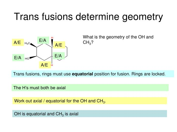 Trans fusions determine geometry