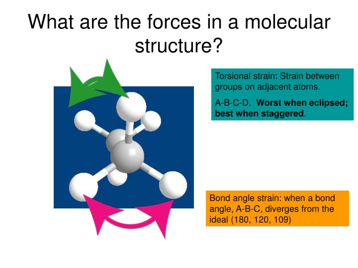 What are the forces in a molecular structure