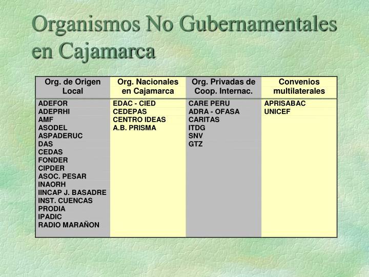 Organismos No Gubernamentales en Cajamarca