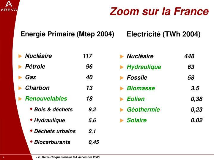 Energie Primaire (Mtep 2004)