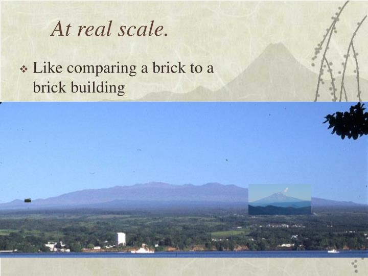 At real scale.