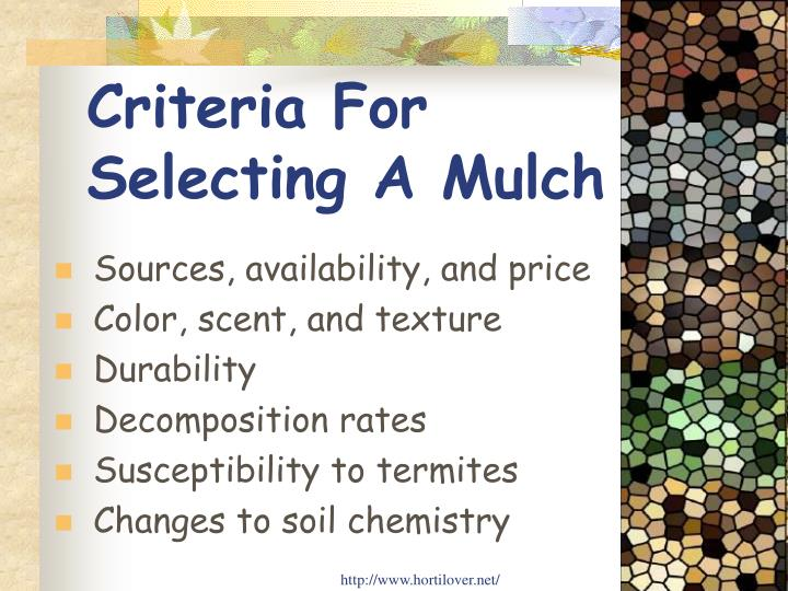 Criteria For   Selecting A Mulch