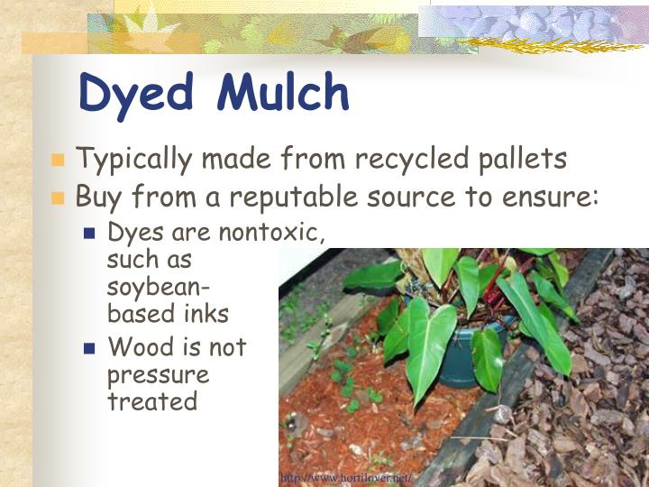 Dyed Mulch