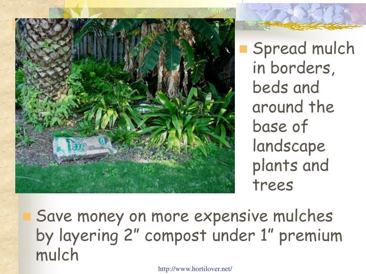 Spread mulch in borders, beds and around the base of landscape plants and trees