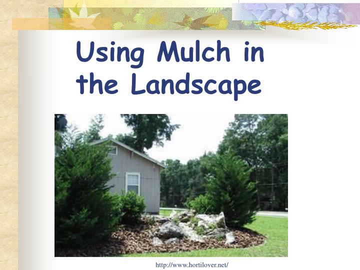 Using Mulch in the Landscape