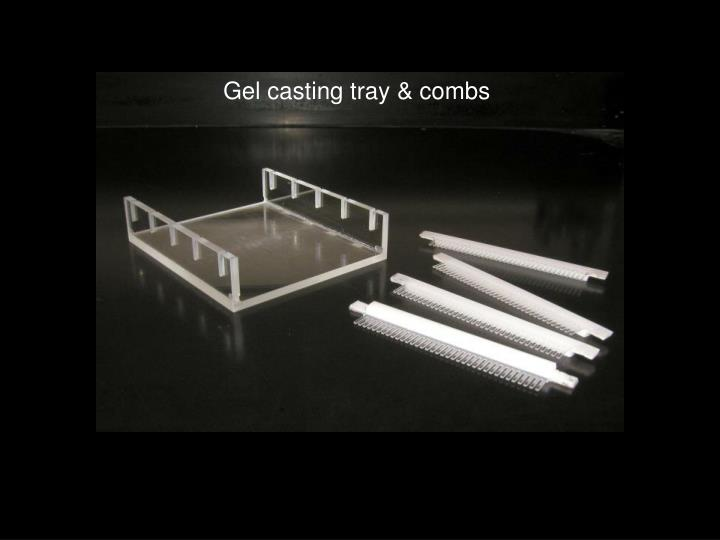 Gel casting tray & combs