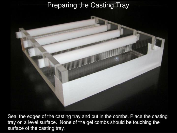 Preparing the Casting Tray