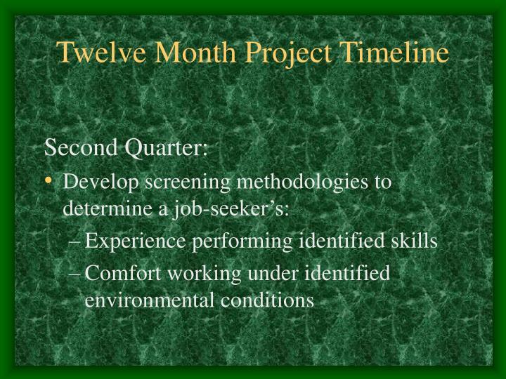 Twelve Month Project Timeline