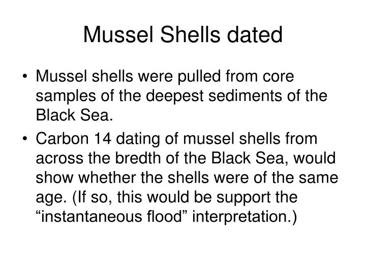 Mussel Shells dated