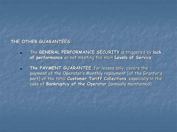 THE OTHER GUARANTEES: