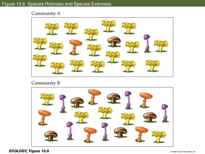 Figure 15.6  Species Richness and Species Evenness