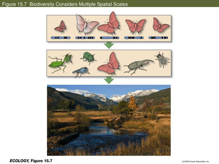 Figure 15.7  Biodiversity Considers Multiple Spatial Scales