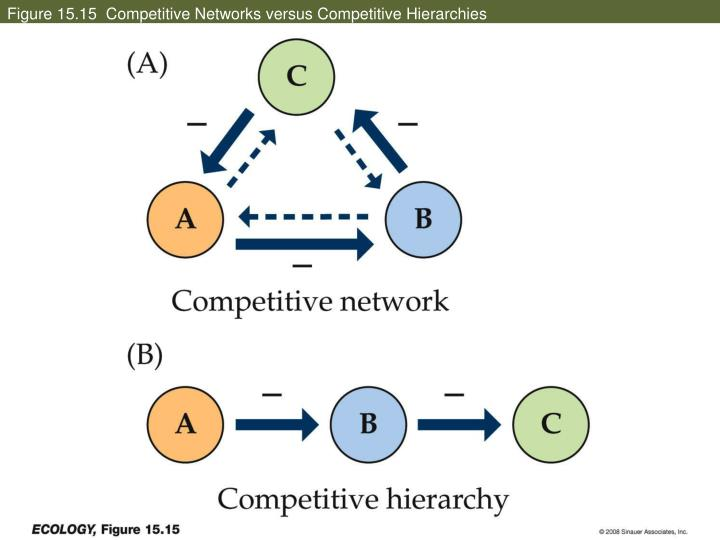 Figure 15.15  Competitive Networks versus Competitive Hierarchies