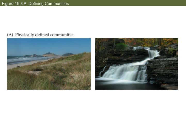 Figure 15.3 A  Defining Communities