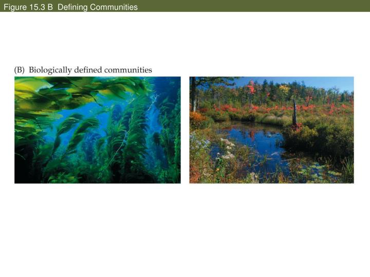 Figure 15.3 B  Defining Communities