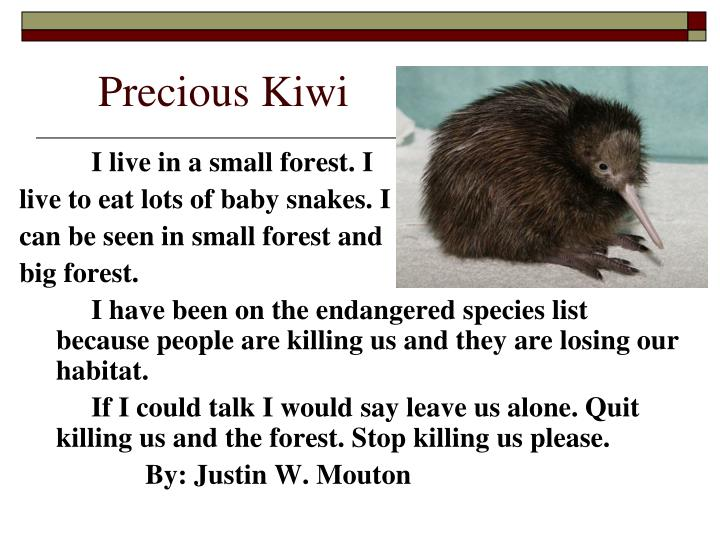 Precious Kiwi