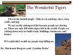 the wonderful tigers