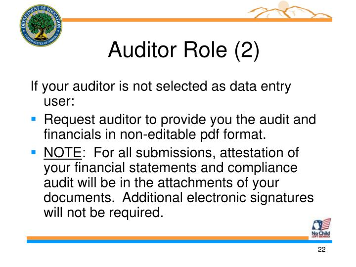 Auditor Role (2)