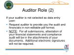 auditor role 2