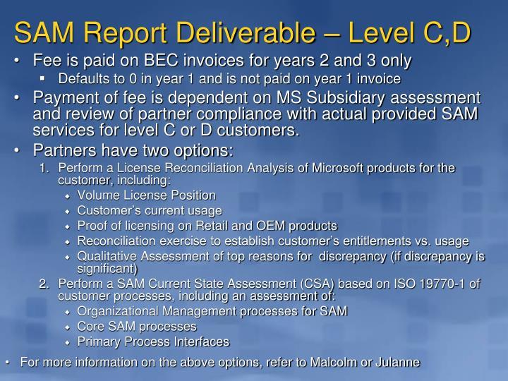 SAM Report Deliverable – Level C,D