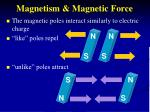 magnetism magnetic force