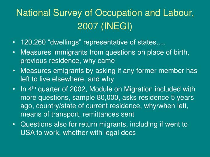 National Survey of Occupation and Labour, 2007 (INEGI)