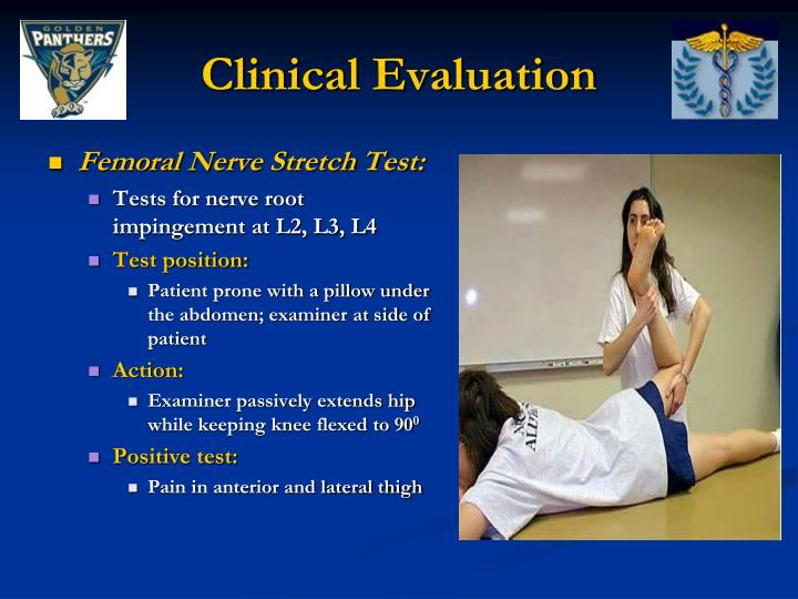 PPT - Thoracic and Lumbar Spine Special Tests and ...