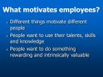 what motivates employees