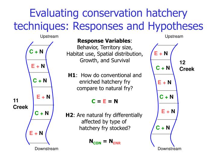 Evaluating conservation hatchery techniques: Responses and Hypotheses