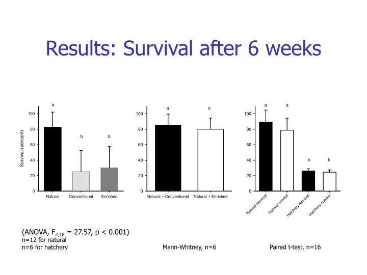 Results: Survival after 6 weeks
