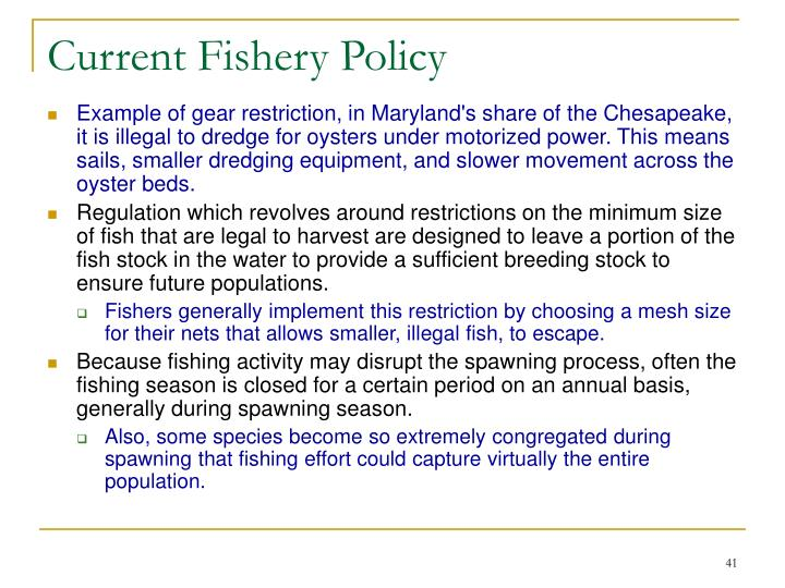 Current Fishery Policy