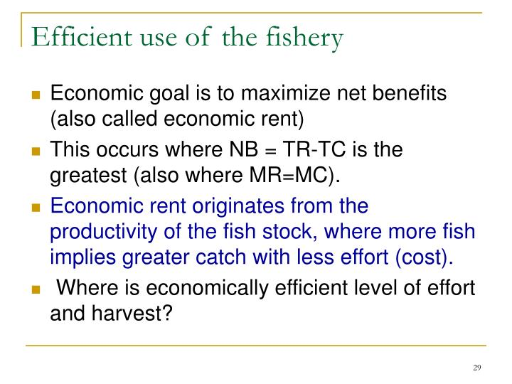 Efficient use of the fishery